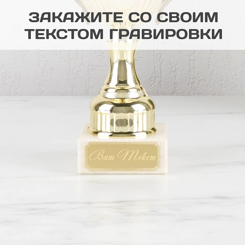 Подарочный кубок Классика шильд